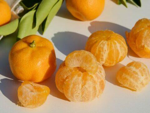 confituur van mandarijntjes