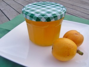 Gelei van nisperos