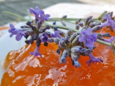 Abrikozenconfituur met lavendel
